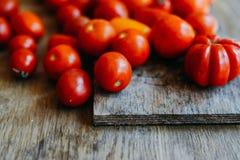 Tomate na tabela de madeira Tomates vermelhos recentemente escolhidos Variação o Imagens de Stock