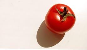 Tomate natürlich Stockbilder
