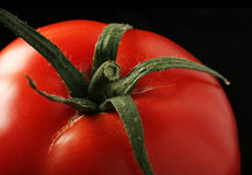 Tomate no preto Fotos de Stock Royalty Free