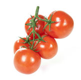 Tomate no ramo isolado no branco Fotografia de Stock Royalty Free