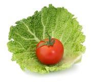 Tomate organique sur le chou Images stock
