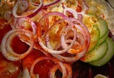 Tomate Paprika Salad del pepino de la cebolla Fotografía de archivo