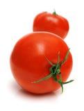 Tomate perfeito Imagem de Stock Royalty Free