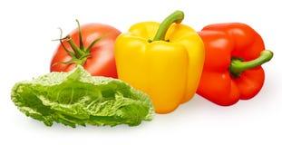 Tomate, pimentas de sino amarelas e vermelhas e salada verde Imagens de Stock