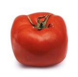 Tomate quadrado Imagens de Stock