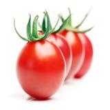 Tomate rojo Foto de archivo libre de regalías