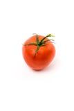 Tomate rojo fresco Imagenes de archivo