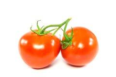 Tomate rojo fresco dos en el fondo blanco Imagen de archivo libre de regalías