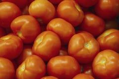 Tomate rojo fresco que miente en el contador del mercado Textura roja de los tomates, verduras sanas brillantes y textura vegetat foto de archivo libre de regalías
