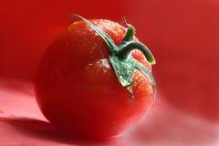 Tomate rouge photo libre de droits