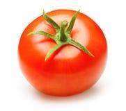 Tomate rouge d'isolement photo libre de droits