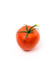 Tomate rouge fraîche Images stock