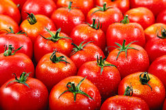 Tomate rouge fraîche dans les gouttes de l'eau. Photos libres de droits