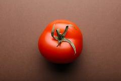 Tomate rouge sur le fond brun Photos libres de droits