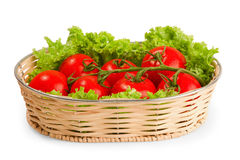 Tomate with salad in basket. On white background Royalty Free Stock Image