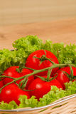 Tomate with salad in basket. On wooden table Stock Images