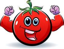 tomate sano libre illustration