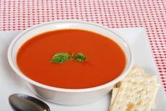 Tomate-Suppe mit Basilikum und Crackern lizenzfreie stockfotos