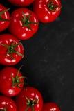 Tomate sur un fond noir avec des baisses réalistes de réflexion et d'eau Tomates fraîches Photos libres de droits