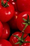 Tomate sur un fond noir avec des baisses réalistes de réflexion et d'eau Tomates fraîches Photo libre de droits