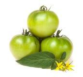 Tomate trois non mûre verte avec une fleur et une feuille d'isolement sur le fond blanc Photo stock