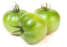 Tomate trois non mûre verte d'isolement sur le fond blanc Image stock