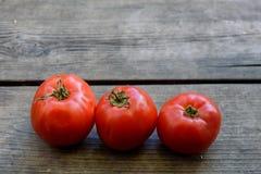 Tomate trois rouge dans une rangée image libre de droits