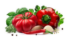 Tomate und grüner Pfeffer für das Einmachen, Kräuter, Knoblauch, Wege Stockbilder