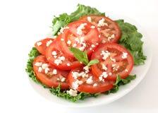 Tomate- und Käsesalat Lizenzfreies Stockfoto