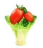 Tomate und Kohl Lizenzfreie Stockbilder