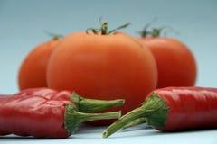 Tomate und Paprika lizenzfreies stockbild
