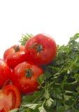 Tomate und Petersilie Stockfotografie