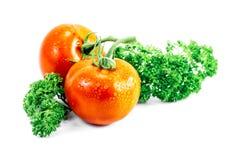 Tomate und Petersilie mit Tropfen Stockbilder