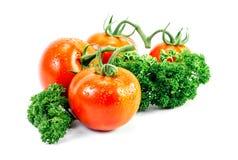 Tomate und Petersilie mit Tropfen Lizenzfreies Stockfoto