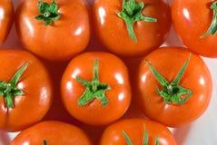 Tomate vermelho Fotografia de Stock Royalty Free