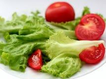 Tomate vermelho, salada verde imagens de stock