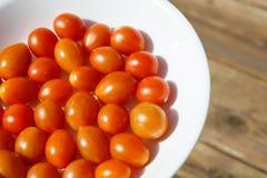 Tomate vom Garten Lizenzfreie Stockfotografie