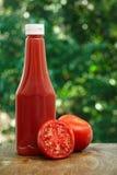 Tomate y botella de salsa de tomate Imágenes de archivo libres de regalías