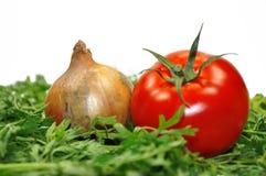 Tomate y cebolla Foto de archivo libre de regalías