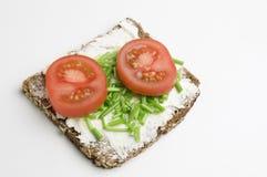 Tomate y cebolletas enteros del grano Imágenes de archivo libres de regalías