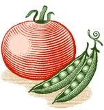 Tomate y guisantes Imagen de archivo libre de regalías