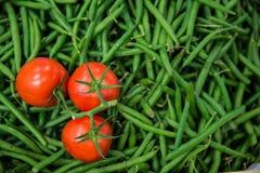 Tomate y habas verdes Foto de archivo libre de regalías