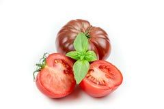 Tomate y hoja de la albahaca aislada Fotografía de archivo
