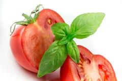 Tomate y hoja de la albahaca aislada Foto de archivo