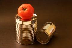 Tomate y latas de aluminio Imágenes de archivo libres de regalías