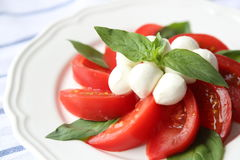 Tomate y mozzarella Imagenes de archivo