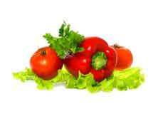 Tomate y paprika Foto de archivo libre de regalías