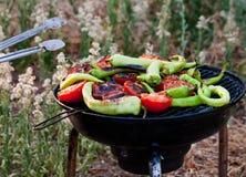 Tomate y pescados de las pimientas que asan a la parrilla en el Bbq Fotos de archivo libres de regalías