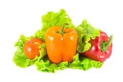 Tomate y pimientas en las hojas de la ensalada Foto de archivo libre de regalías