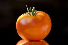Tomate y tomate. Imagen de archivo libre de regalías